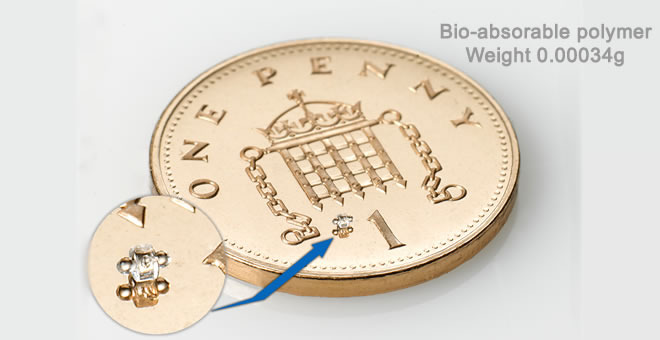Micromoulding - Penny